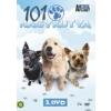 101 NAGYKUTYA 3. - DVD -