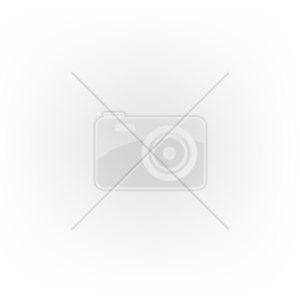 Purina Pro Plan Delicate Optirenal (400g)