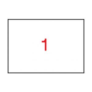 APLI 1 pályás etikett, 297 x 420 mm (A3), 100 etikett/csomag
