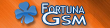 Fortuna GSM