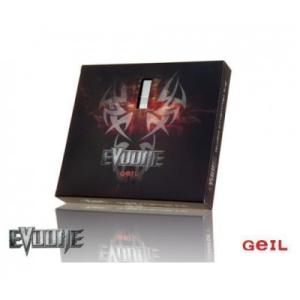 Geil 16 GB DDR3 1333 MHz Evo