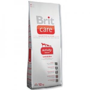 Brit Care Activity