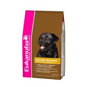 Eukanuba Adult Labrador Retriver