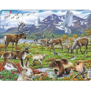 Larsen Skandinávia állatvilága FH14