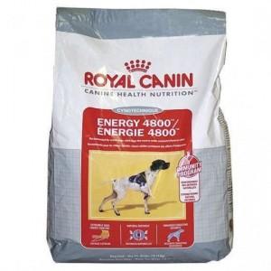 Royal Canin ENERGY 4800 kutyatáp 15 kg