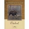 Maderspach Viktor A MEDVE