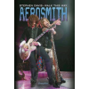Stephen Davis Aerosmith - Walk this Way