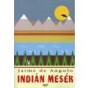 Jaime de Angulo Indián mesék