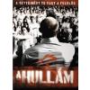 A hullám (DVD)