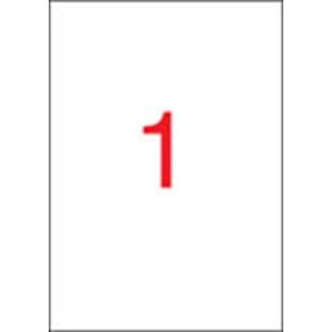 APLI 1 pályás időjárásálló etikett, 210 x 297 mm, fehér, 20 etikett/csomag