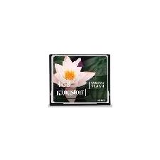 Kingston CF 4GB memóriakártya