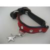 JJ Pets Polished Star csillag alakú medál