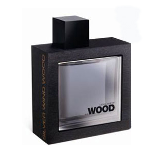 Dsquared He Wood Silver Wind Wood EDT 100 ml