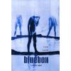 Bíbor Kiadó Bluebox - kiskerti tabló