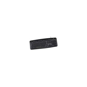 V7 STANDARD KEYB USB NL/US USB KEYBOARD - RETAIL PACK (KC0D1-5E8P)