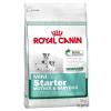 Royal Canin Mini Starter - 2 x 8,5 kg