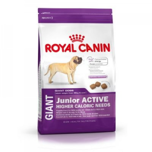 Royal Canin Giant Junior Active - 15 kg