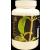 Stevia por 50g