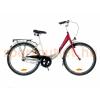 Neuzer Balaton kerékpár