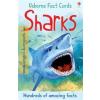Sharks fact cards