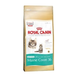 Royal Canin FBN Kitten Maine Coon 36 400 g