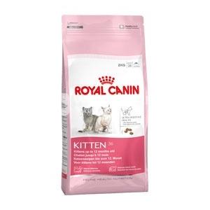 Royal Canin FHN Kitten 36 10 kg