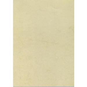 APLI Előnyomott papír, A4, 200 g, APLI, havanna