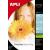 APLI Fotópapír, tintasugaras, 10x15 cm, 180 g, fényes, APLI