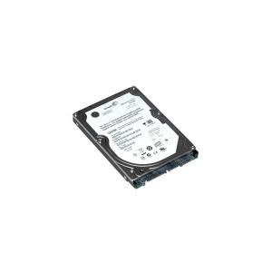 Seagate Momentus 1TB 5400RPM 8MB SATA2 ST1000LM024