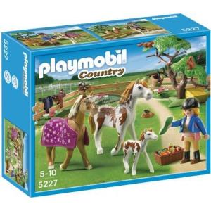 Playmobil Csikó a karámban - 5227