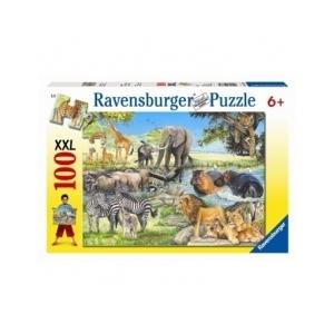 Ravensburger Afrikai állatok