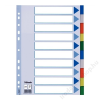ESSELTE Regiszter, műanyag, A4, 10 részes, ESSELTE (E15261)