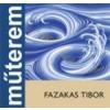 FAZAKAS TIBOR - MŰTEREM