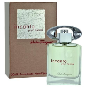 Salvatore Ferragamo Incanto pour Homme EDT 100 ml