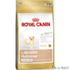 ROYAL CANIN kutya  LABRADOR JUNIOR 3kg
