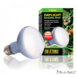 EXO-TERRA 2132 DAY LIGHT BASKING SPOT LAMP 75W izzó