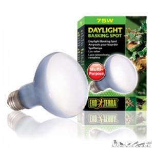 EXO-TERRA 2132 DAY LIGHT BASKING SPOT LAMP 75W izzó
