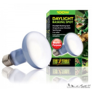 EXO-TERRA 2133 DAY LIGHT BASKING SPOT LAMP 100W izzó