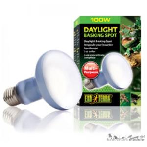 EXO-TERRA 2133 DAY LIGHT BASKING SPOT LAMP 100W izzó