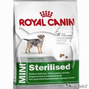 ROYAL CANIN kutya MINI SENSIBLE 10kg