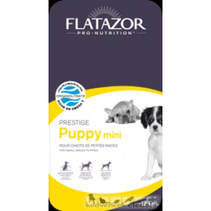 Flatazor Puppy Mini