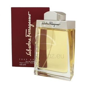 Salvatore Ferragamo Salvatore Ferragamo EDT 100 ml