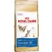 Royal Canin Siamese 38 0,4kg