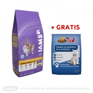 IAMS Kitten & Junior 10kg