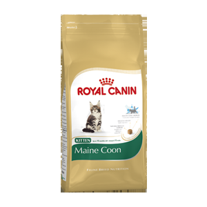 Royal Canin Kitten Maine Coon 36 2x10kg