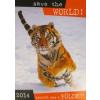 Nincs Adat Save the World! / Mentsük meg a Földet! 2014