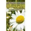 Borbás Gabriella Dóra A Biblia mint kommunikációs tankönyv