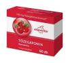 Vitamintár Tőzegáfonya tabletta 60 db vitamin