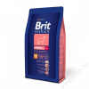 Brit Premium Large Junior 2db 15kg
