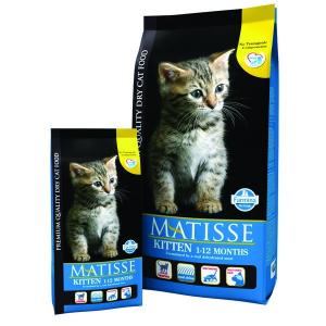Matisse kitten 1,8kg